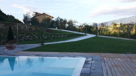 Relais Villa Belvedere: the pool
