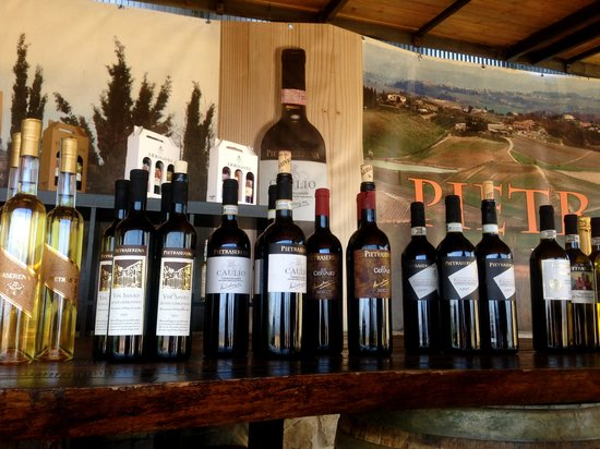 Tuscan Wine Tours by Grape Tours : Wine