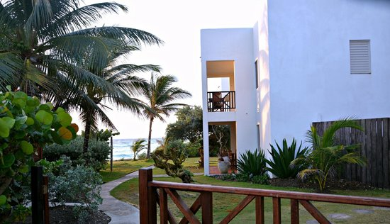 Ocean Spray Beach Apartments : Gardens