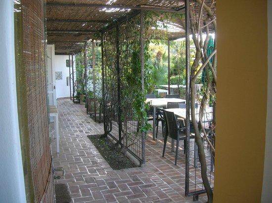 La Limonaia a Mare: Il pergolato tra le stanze e la terrazza giardino