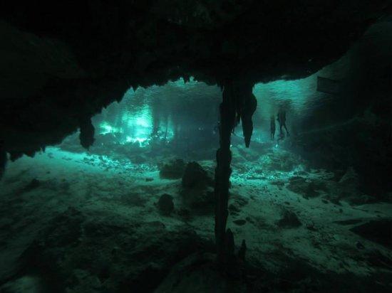 Koox Diving: Cenote Dos Ojos