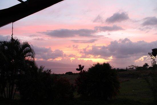 Lahaina Stables: Maui Sunset