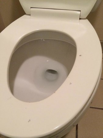 Econo Lodge Airport Humble: Cigarette burns and stains on toilet.