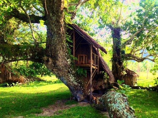 Lope Lope Lodge : Port Olry, Santo.