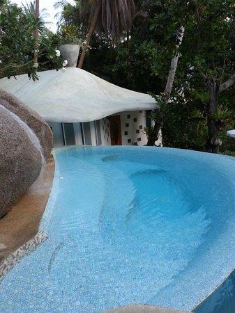 Monkey Flower Villas: Pool and villa