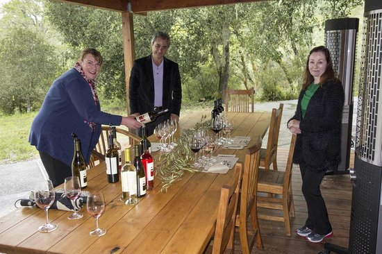Healdsburg Wine Tours : Our tasting at Medlock-Ames Winery with Sid