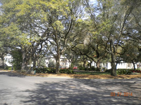 Savannah Bed & Breakfast Inn : Chatham Square