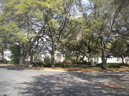 Savannah Bed & Breakfast Inn: Chatham Square