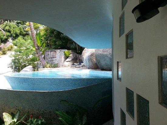 Monkey Flower Villas : Pool