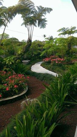 Hilo Seaside Hotel: 中庭