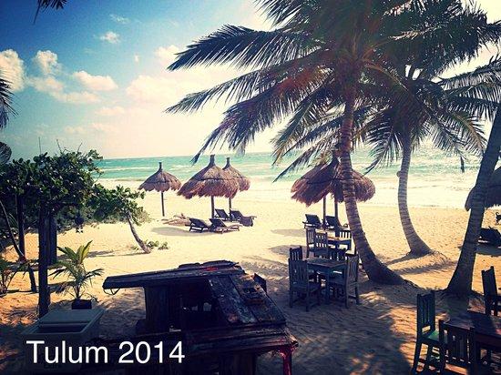 La Zebra Colibri Boutique Hotel: Zebra playa