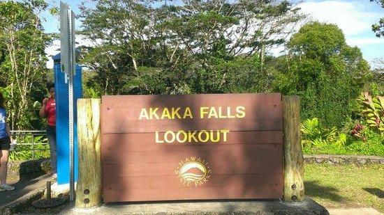Akaka Falls State Park : アカカフォール