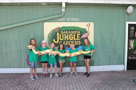 Sarasota Jungle Gardens : Summer Campers & Lizzie the snake