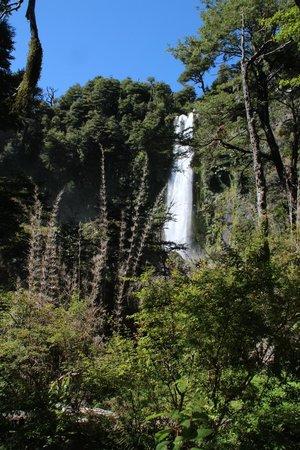 Club Los Ulmos: Wasserfall bei Palguin