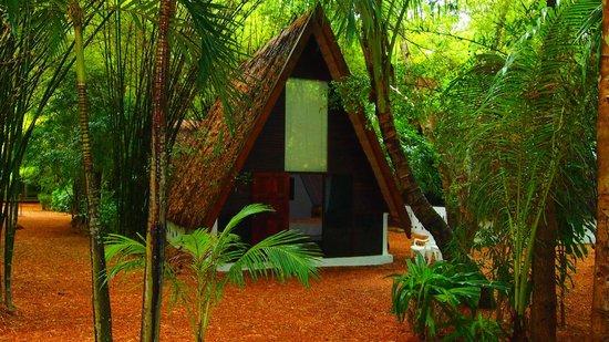 Milky Bay Resort : Our room