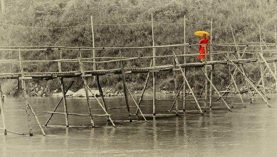 monk on bamboo bridge
