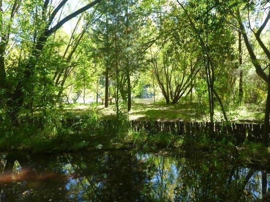 La Casona de Odile: Garden part 2
