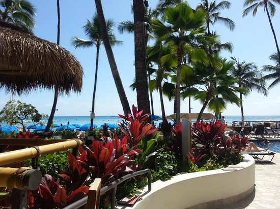 Duke's Waikiki: The view from the patio is spectacular!