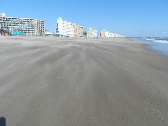 SpringHill Suites Virginia Beach Oceanfront : Along the shore