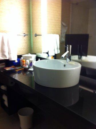Hotel Nikko San Francisco: Baño moderno y limpio