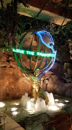 Rainforest Cafe: Do your part and help save the rainforests