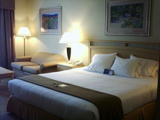 Holiday Inn Express Hotel & Suites Raleigh North - Wake Forest : King Bed Guest Room