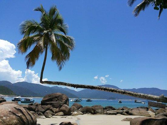 Aventureiro Beach : Marca registrada da Praia.