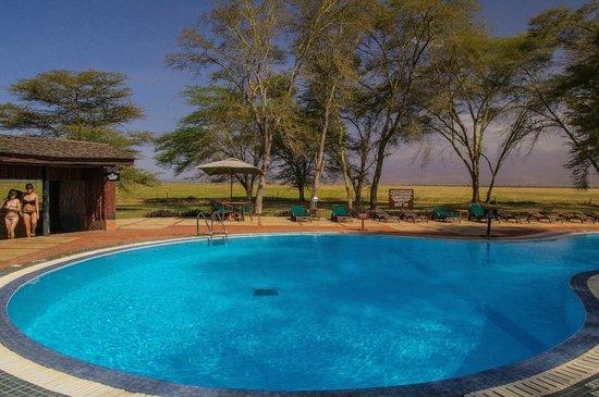 Ol Tukai Lodge: The Pool