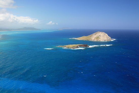 Makapuu Lighthouse Trail: The View From the Top