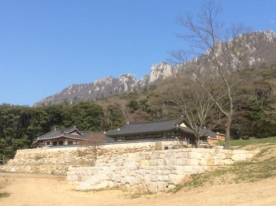 Mihwangsa Temple: Berge hinter dem Tempel