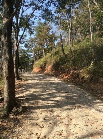 Mihwangsa Temple: wanderweg