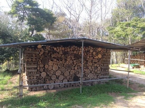 Mihwangsa Temple: Holz fuer den Winter