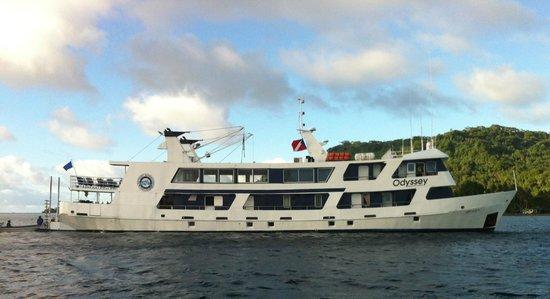 Truk Lagoon: MV Odyssey