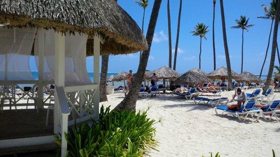 Dreams Palm Beach Punta Cana: Que playa por dios!!