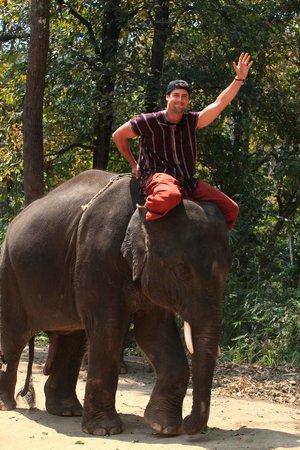 Patara Elephant Farm - Private Tours : Patara Elephant Farm