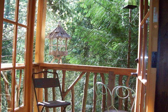 treehouse point - Treehouse Masters Prices
