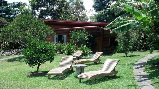 Arco Iris Lodge : Hotel grounds with some lounge chairs