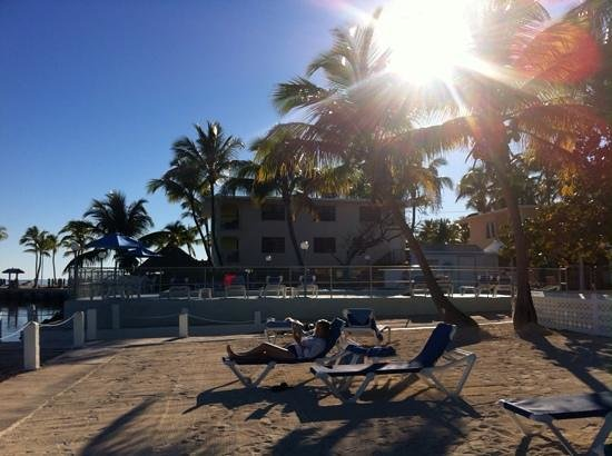 Pines and Palms Resort: fabulous