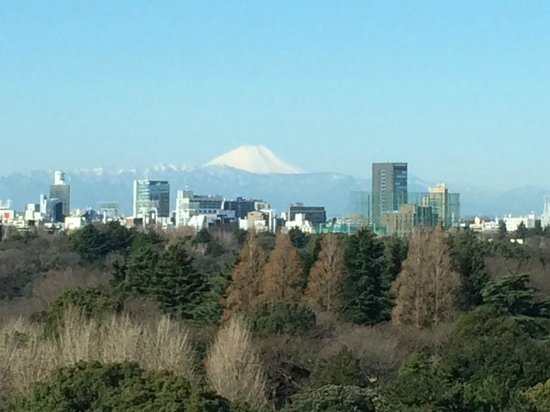 Hotel New Otani Tokyo The Main: I could see Mt Fuji from my window
