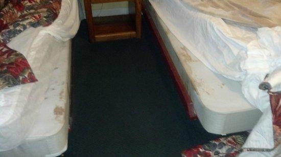 Grand Prix Motel : mattress
