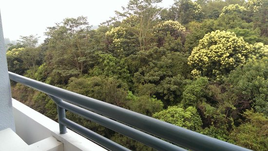 Crowne Plaza Science City: view from room balcony - looks out on trees