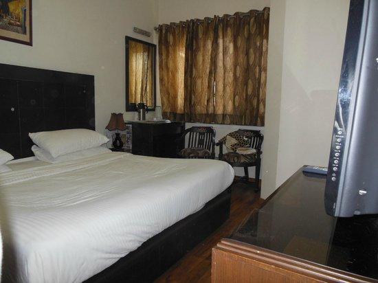 Hotel Prems Paradise : Room 305