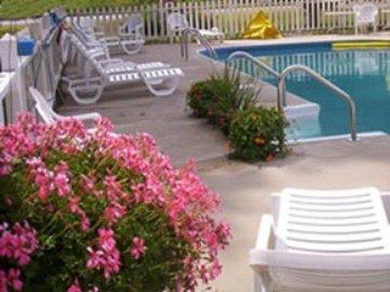 Villager Motel: Pool
