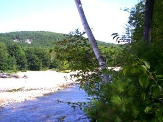 Villager Motel: River Trees