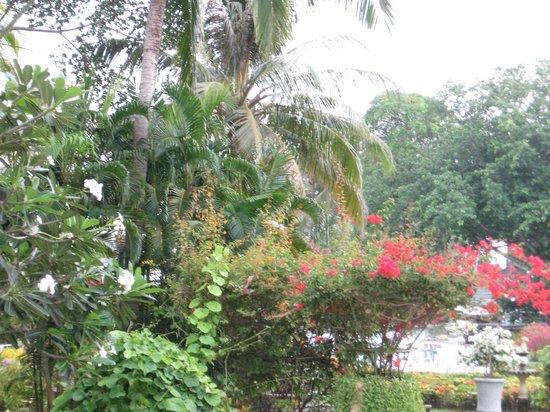 Thavorn Palm Beach Resort: территория