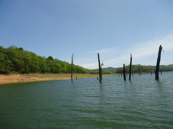 Periyar Lake : boating