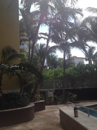 Sun Tower Hotel & Suites: Pool Area View