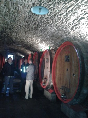 Franco Wine Tour Experience: natural wine storage