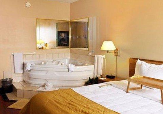 Econo Lodge Inn & Suites : ING