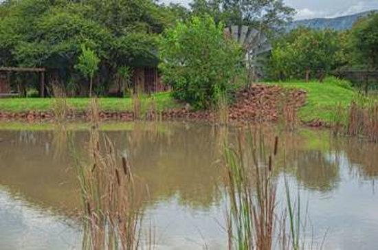 Hartbeespoort Eco Lodge & Boutique Backpackers : Garden